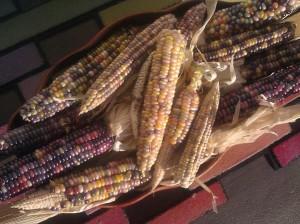 cornbowl